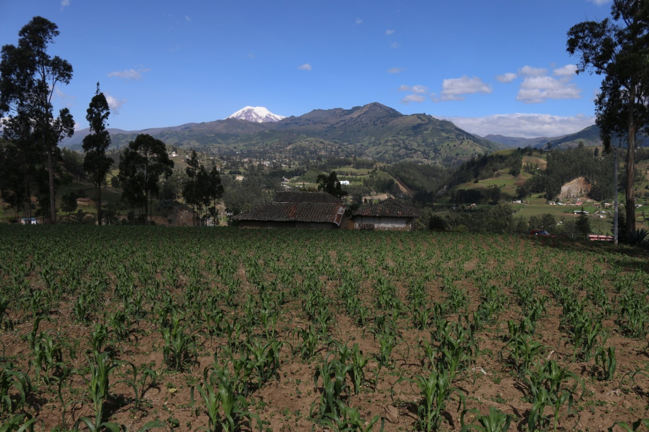 Landscape from the Pachamama Oral History Project